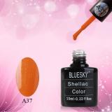 Shellac BLUESKY, № А37