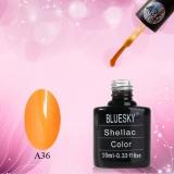 Shellac BLUESKY, № А36