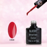 Shellac BLUESKY, № CS09