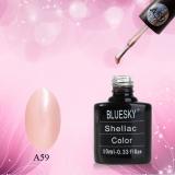 Shellac BLUESKY, № А59