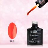 Shellac BLUESKY, № CS45