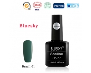 Shellac BLUESKY, № Brazil 01