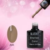 Shellac BLUESKY, № А66
